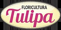 Tulipa Floricultura em São José do Rio Preto